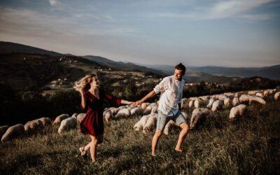 Sesja narzeczeńska w górach z owcami